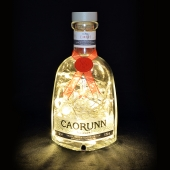Caorunn Ka-Roon Scottish Gin Upcycled LED Bottle Lamp Light