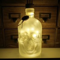 JayEngrave Glass Skull Head Warm White LED Pirate Style Frosted Bottle Lamp Light