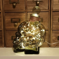 JayEngrave Smoked Glass Crystal Skull Head 700ml Warm White LED Glass Bottle Lamp Light